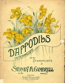 Daffodils. Intermezzo for piano