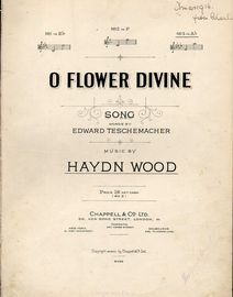 O Flower Divine - Song - In the key of A flat major for high voice