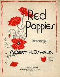 Red Poppies, Intermezzo