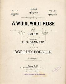 A Wild Wild Rose - Song - In the key of D major for medium voice