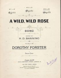 A Wild Wild Rose - Song - In the key of E flat major for high voice