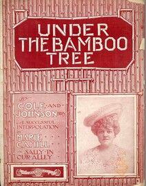 Under the Bamboo Tree - Song for Piano and Voice - Sung with enormous success in Mr. George Edwardes\' production \