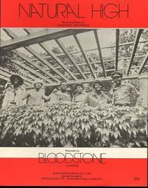 Natural High - Recorded by Bloodstone on Decca Records