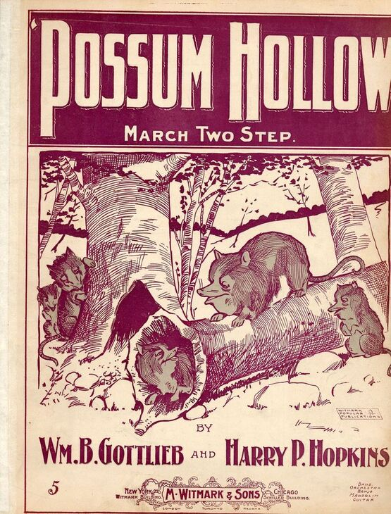 19 | 'Possum Hollow - March and Two Step for Piano Solo